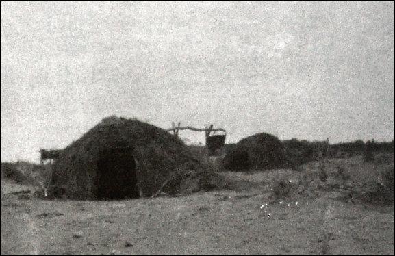 Aboriginal homes. Photograph Thomas Gill c.1918