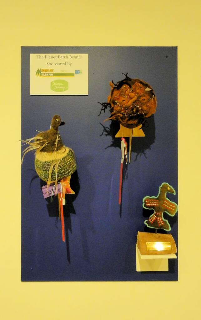Emu by artist Rhonda Williams, Wiluna Art Centre, WA, Alice Springs Beanie Festival, 2014
