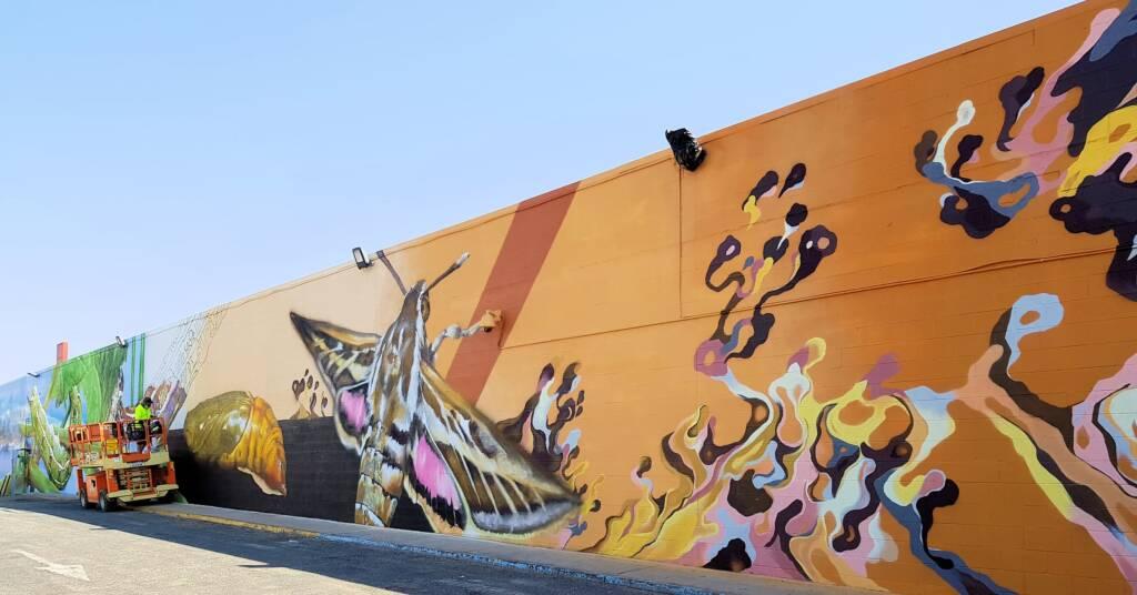 Alice Springs Street Art
