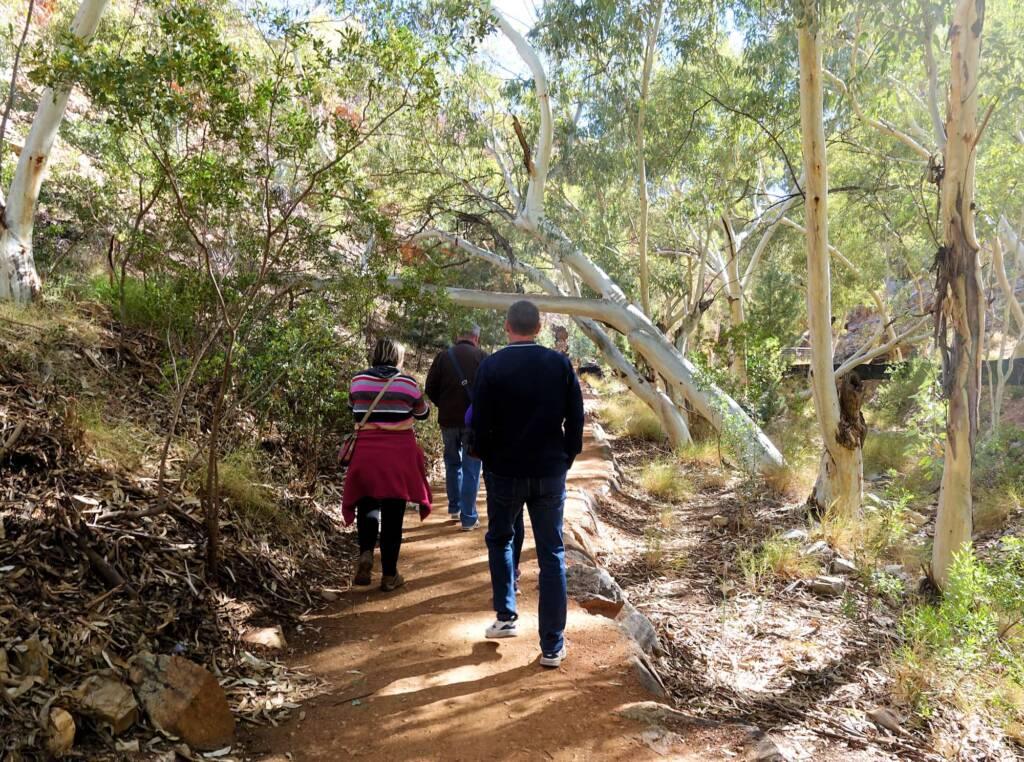 Walking trail at Angkerle Atwatye (Standley Chasm), NT