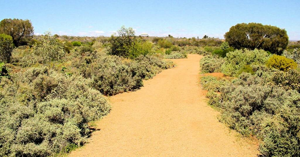 Australian Arid Lands Botanic Garden