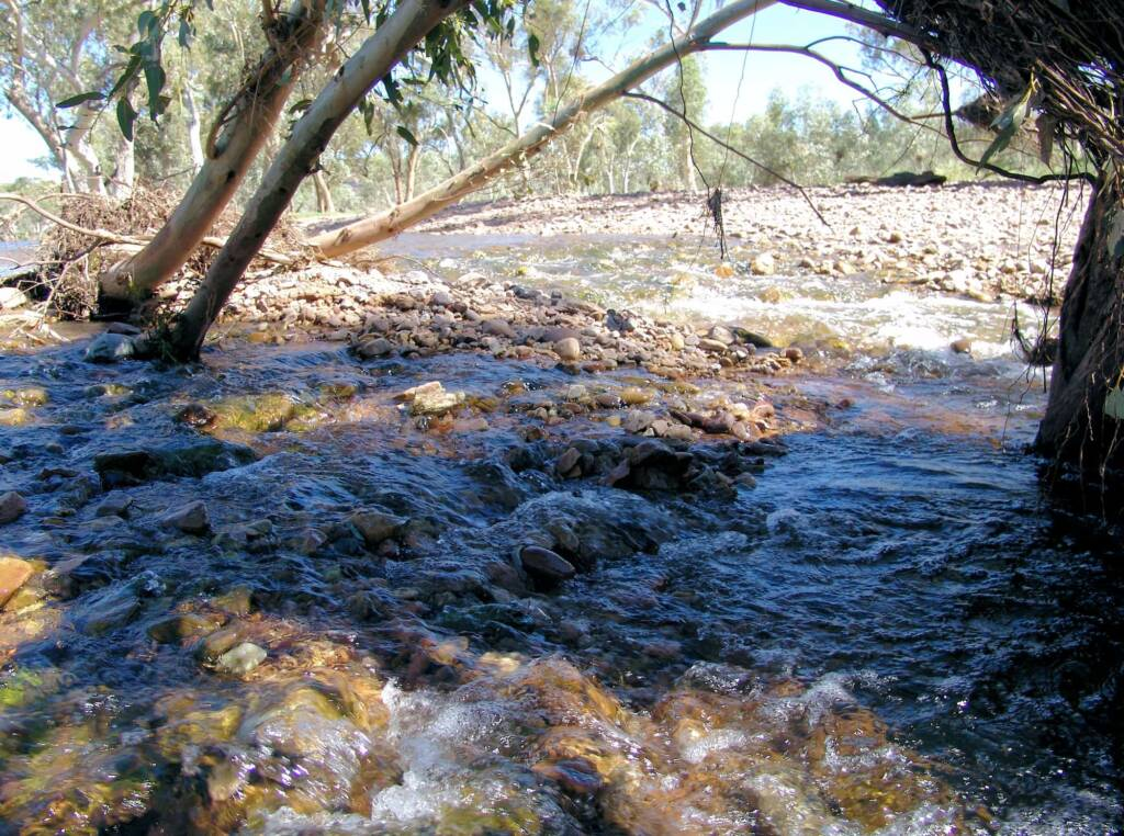 Birthday Waterhole, Tjoritja / West MacDonnell National Park