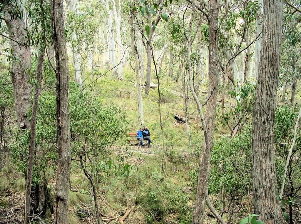 Dawson Spring Nature Trail, Mount Kaputar National Park