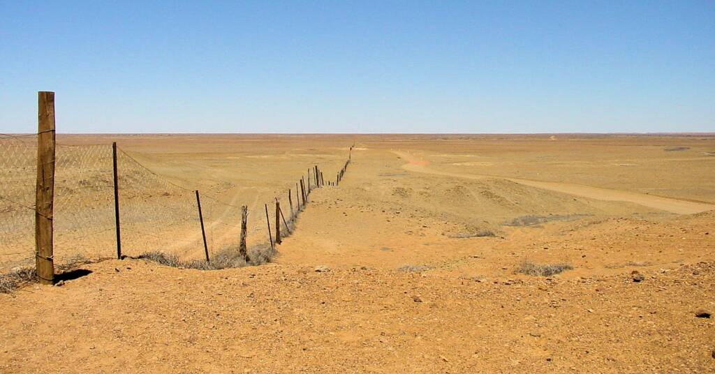 Dog fence - The Breakaways in South Australia