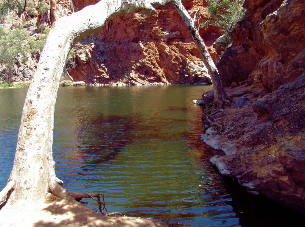 Ellery Creek Big Hole, Tjoritja / West MacDonnell National Park