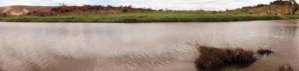 Water in the Finke River at Two Mile, 'Tjoritja' - West MacDonnell National Park