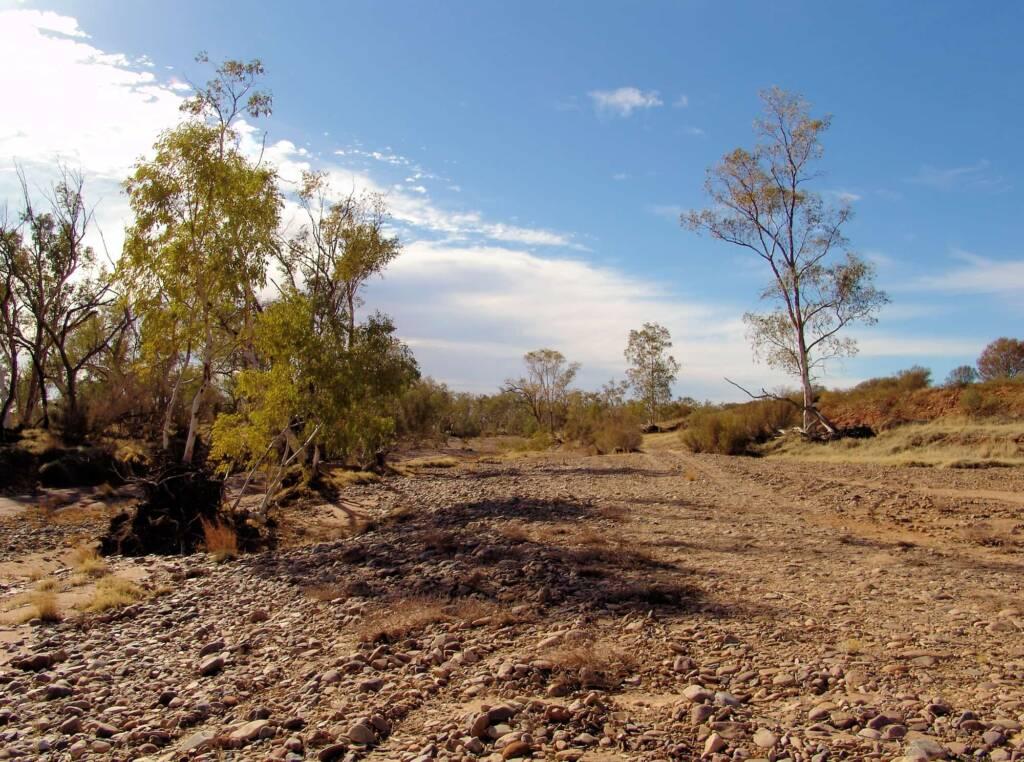 Hale River bed, Owen Springs Reserve, NT
