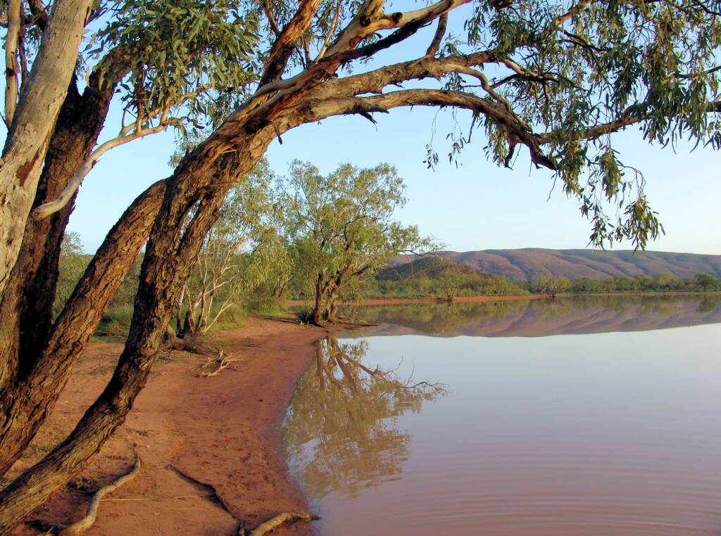 Ilparpa Claypans (Ilparpa Valley), Alice Springs, NT