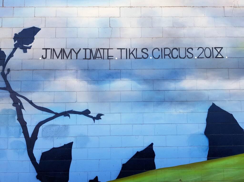 Artist JIMMY DVATE TIKLS CIRCUS 2018