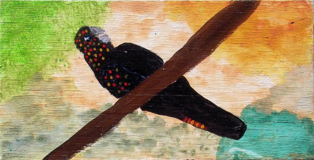 Red-tailed Black Cockatoo, 2006 by Kukula McDonald