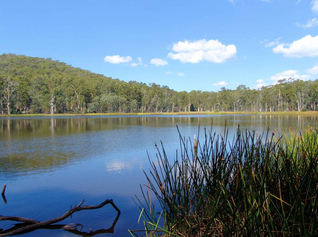 Lake Cobbler, Victoria's High Country