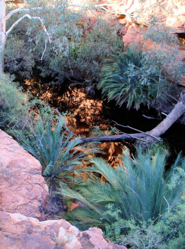 Looking down into the Garden of Eden, Kings Canyon
