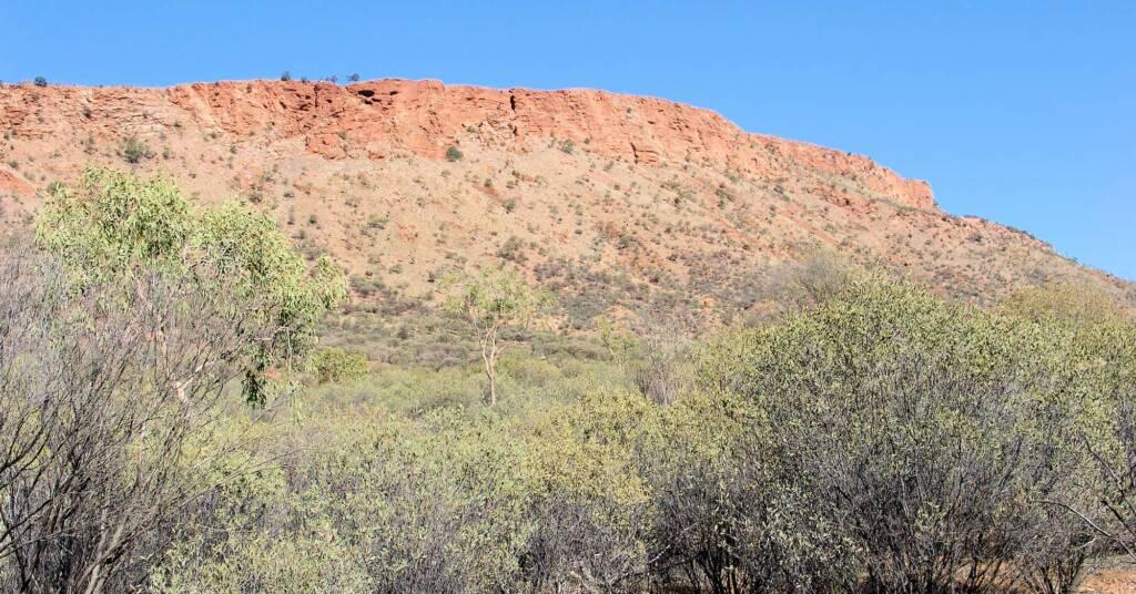 Mount Gillen, Alice Springs Desert Park