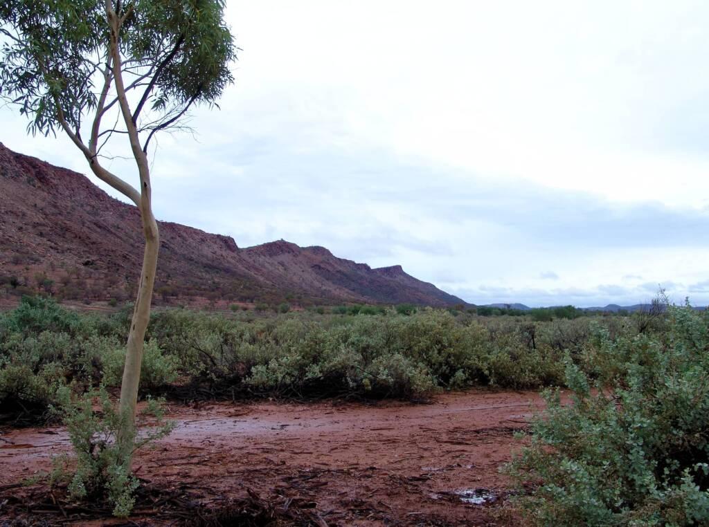 Rain clouds (overcast day) overlooking Mount Gillen, Alice Springs, 9 Jan 2010