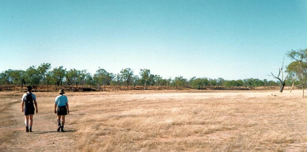Bush walk in Undarra, Queensland