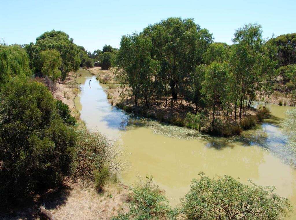Wetlands in the Kyabram Fauna Park, VIC